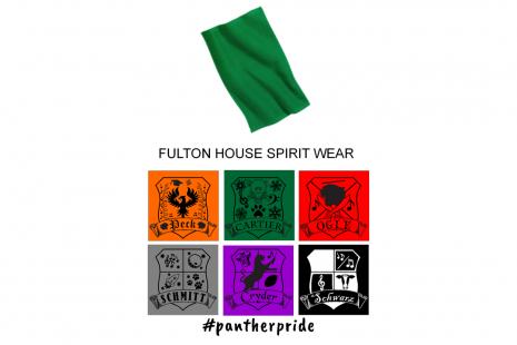 Fulton Website PT38